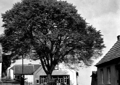 Stauf - Historische Bilder und Postkarten